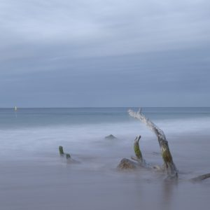 landscape-prints-mornington-peninsula-051